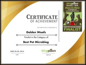 BlogPaws Certificate Finalist 2016 Nose-to-Nose Awards Finalist