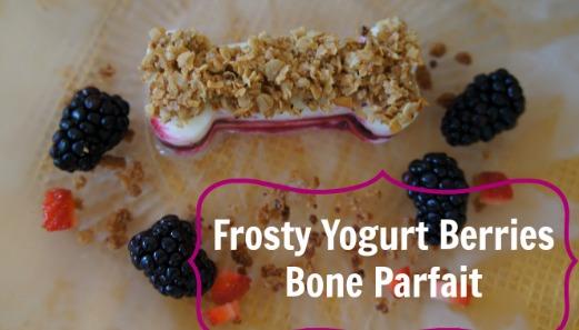 Frosty Yogurt Berries Dog Treats