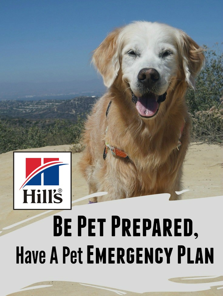 Hills Pet Pet-Prepared-Pet-Emergency-Plan