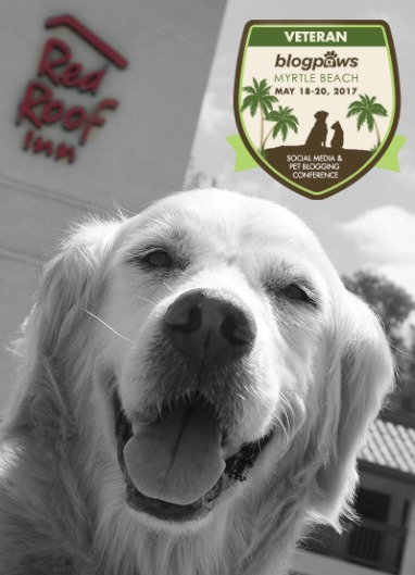 Red Roof Inn GWSponsor Blog Paws 2017 Conference