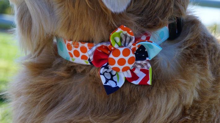 Cotton Dog Collar & Flower
