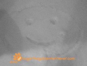 SGR: SNOW Smiley Face