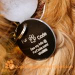 FurCode Pet ID