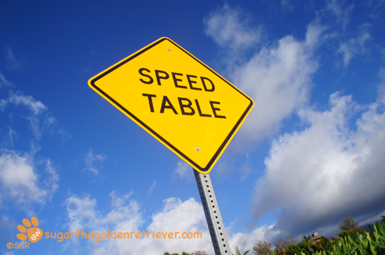 Speed Table Sign