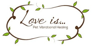 Love is Pet Vibrational Healing