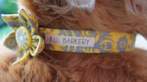 BW Barkery Dog Collar Giveaway