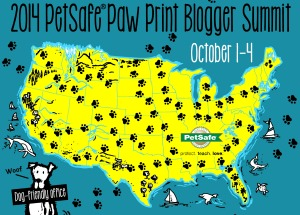 PetSafe_SummitBagde