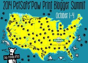 PetSafe Pet Blogger Summit