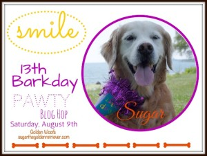 SUGAR 13th Barkday Pawty Blog Hop