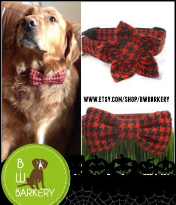 Costume Accessory Dog Safe on Halloween