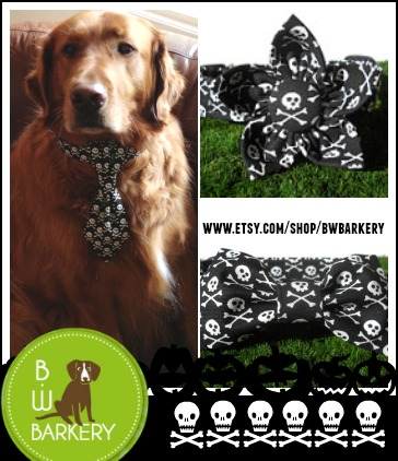 Dog Safe on Halloween Costume Accessory