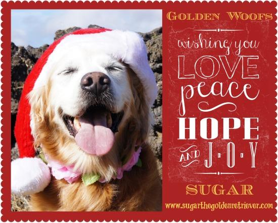 Happy Holidays (Hau'oli Lanui) Merry Christmas (Mele