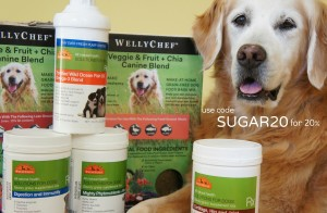 Welly Tails Dog Supplements