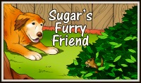 Sugar's Furry Friend