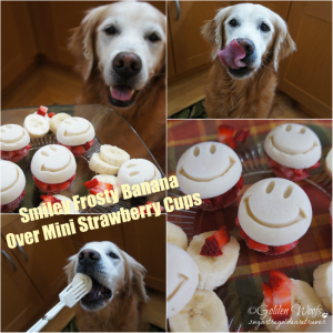 DELISH! Smiley Frosty Banana: Sugar The Golden Retriever