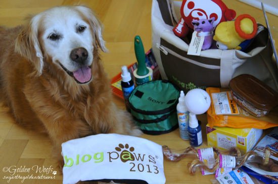 Goodies From BlogPaws: Sugar The Golden Retriever