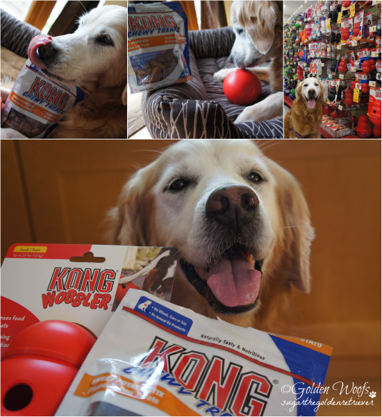 PAWsome Combo Wobbler n Kong Treats: Sugar The Golden Retriever