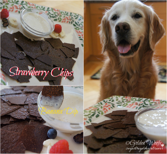 Strawberry Chips w/ Banana Dip: Sugar The Golden Retriever