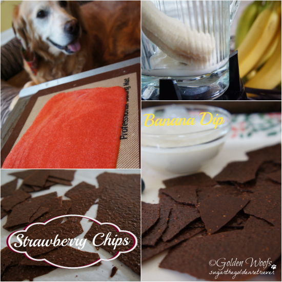 Strawberry Chips n Banana Dip: Sugar The Golden Retriever