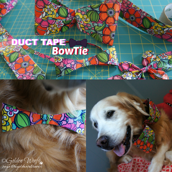 Sugar Wears Duct Tape BowTie: Sugar The Golden Retriever