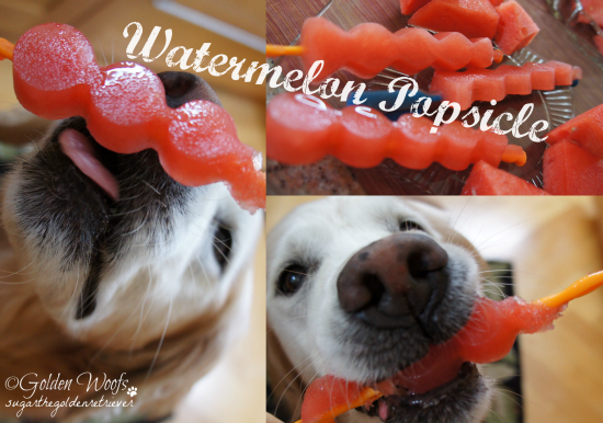 Watermelon Popsicle For You and Your DOG