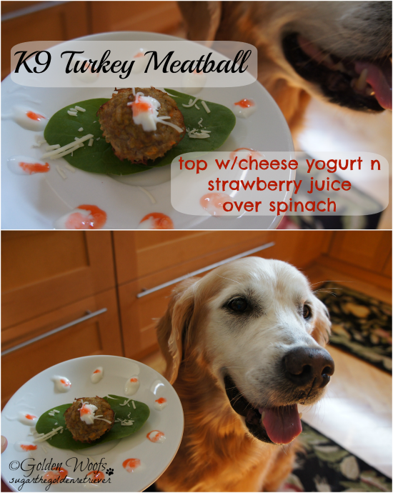 K9 Turkey Meatball Top w/ Cheese Strawberry Yogurt