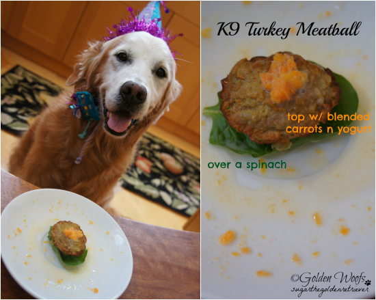 K9 Turkey Meatball Top w/ Carrot n Yogurt