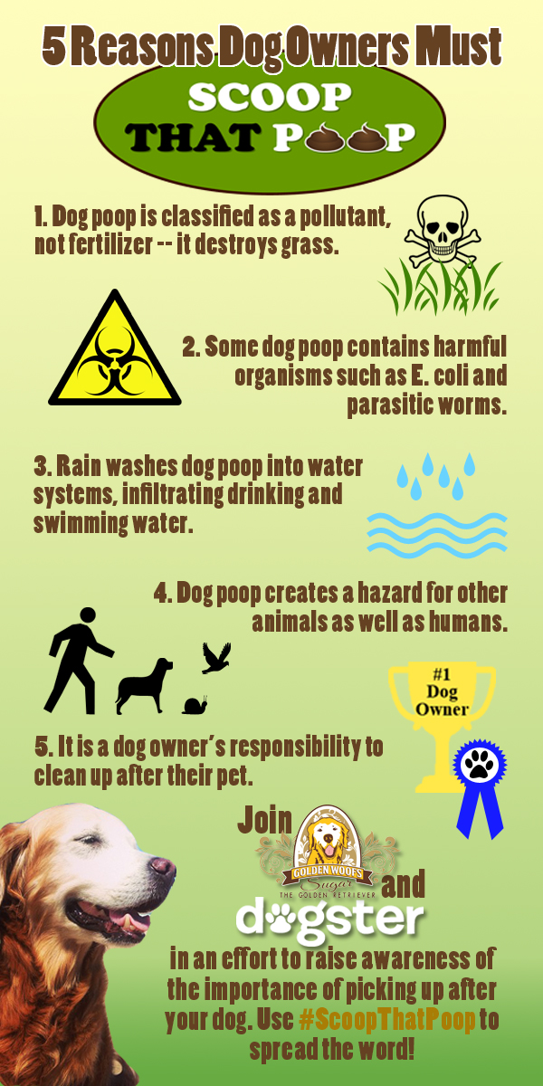 #ScoopThatPoop Infographic