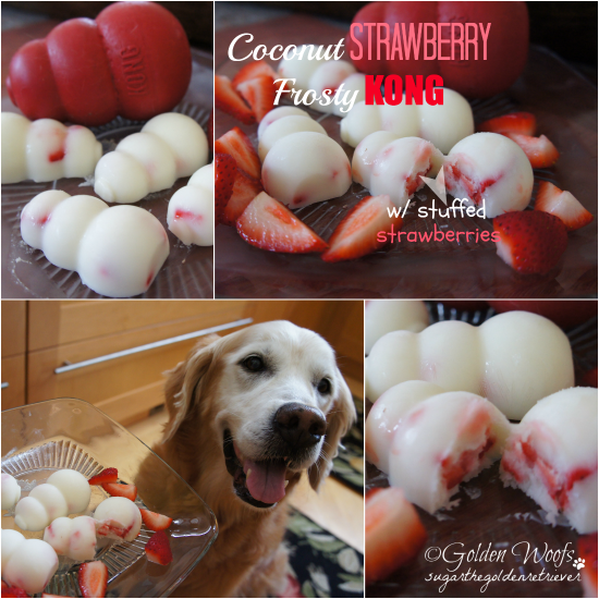 Coconut Strawberry Frosty KONG: Sugar The Golden Retriever