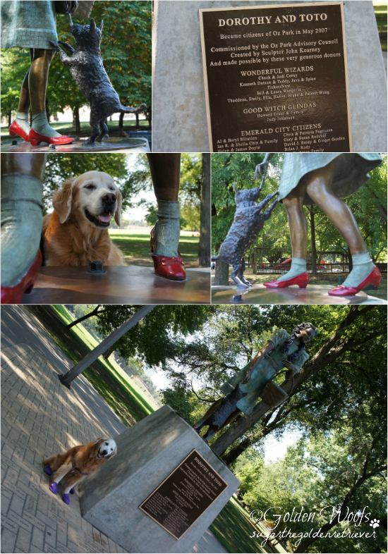 Oz Park, Dorothy & Toto: Sugar The Golden Retriever