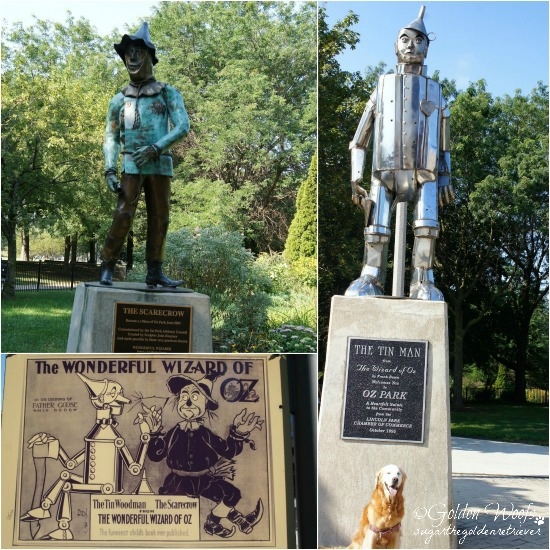 Oz Park, Tin Man & Scarecrow: Sugar The Golden Retriever