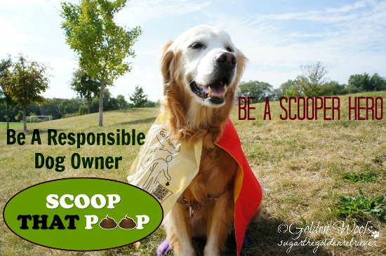 #ScoopThatPoop : Be Scooper Hero