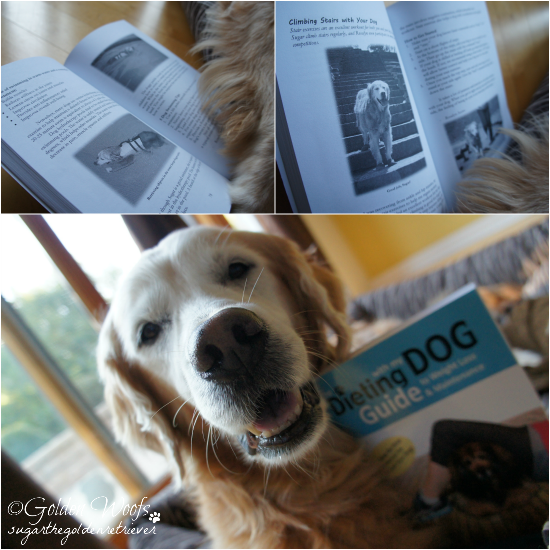 Sugar's on The Dieting With My Dog Guide Book