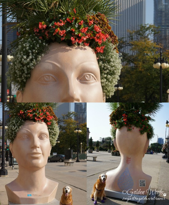 Sugar Explores Giant Chia Head from Chicago Cultural