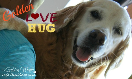 Sugar The Golden LOVE Hug
