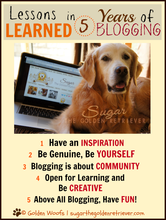 Lessons Learned in 5 Years of Blogging