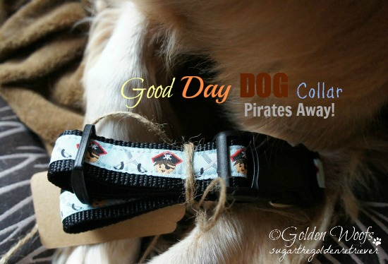 Good Day Dog Collar Pirates Away