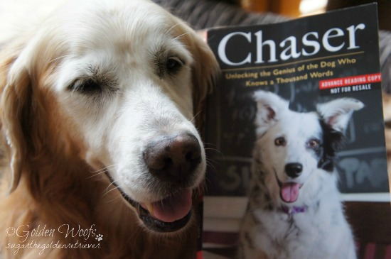 John Pilley's Chaser Unlocking The genius of the Dog Who Knows a Thousand Words