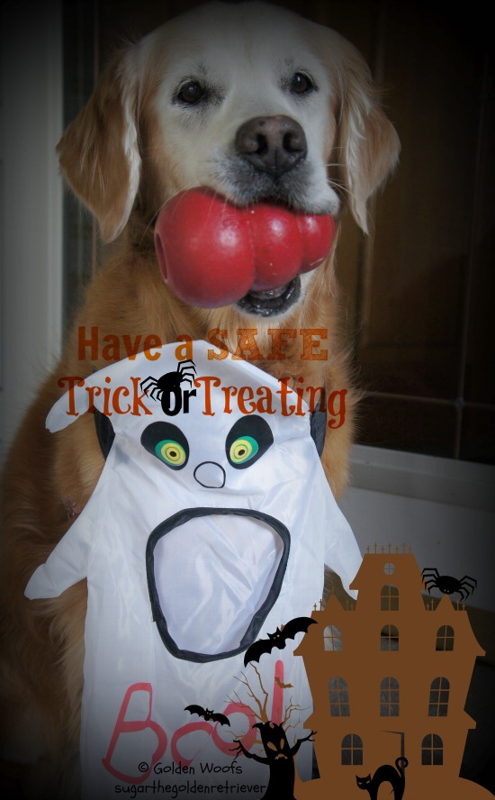 Have a Safe Trick n Treating