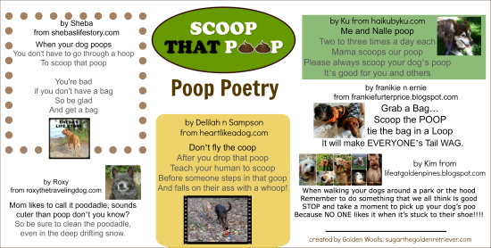 Scoop That Poop : Poop Poetry Entry #2