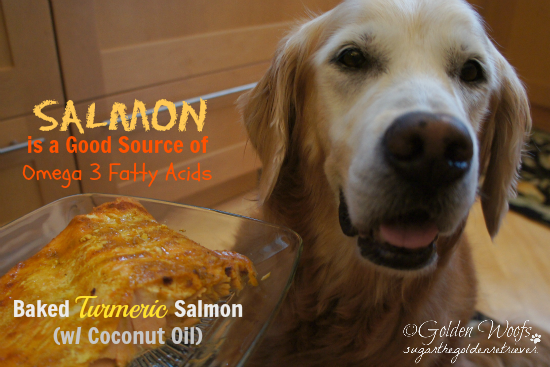 Salmon Source of Omega 3 Fatty Acids