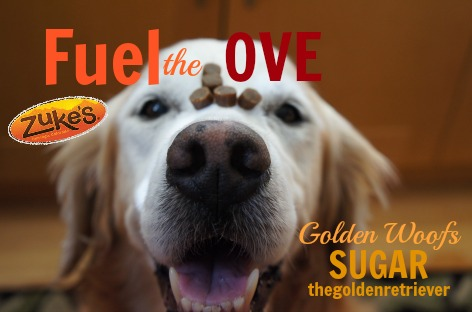 Zukes Treats #FuelTheLove of Golden Woofs, Sugar