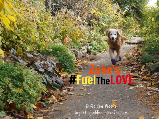 Zuke's #FuelTheLove Senior Dog Sugar
