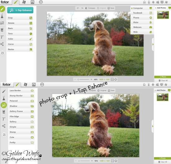Fotor Basic Photo Editing Feature