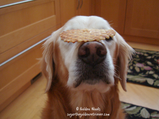 Sugar Balances a Banana Pizzelle