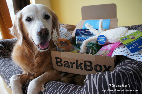 Sugar's BarkBox