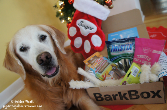 BarkBox Holiday Gifts