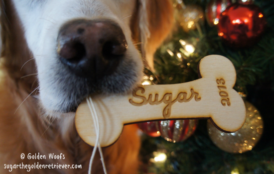 Sugar Custom Bone Ornament