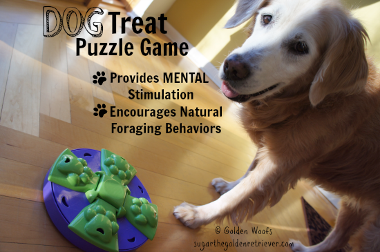 Benefits Dog Treat Puzzle Game