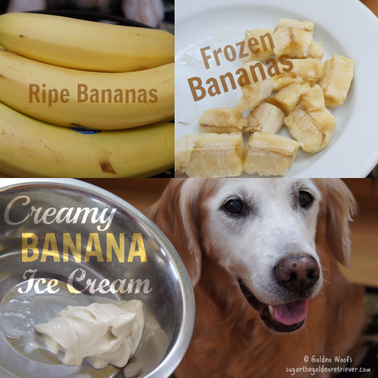 Creamy Banana Ice Cream